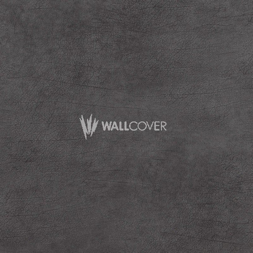 17931 Curious BN Wallcoverings