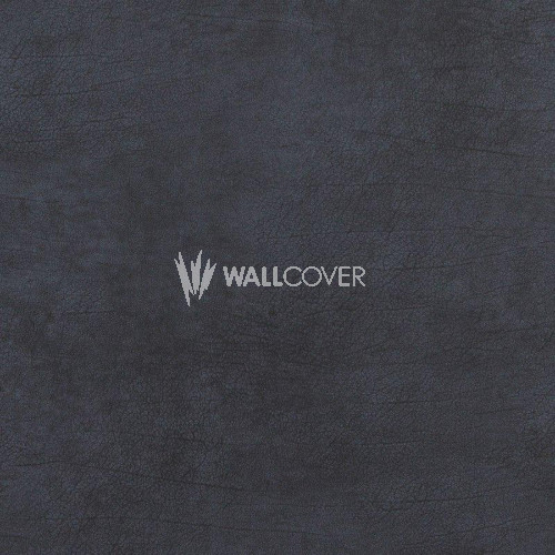 17936 Curious BN Wallcoverings