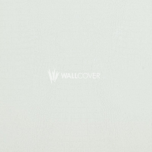 17955 Curious BN Wallcoverings