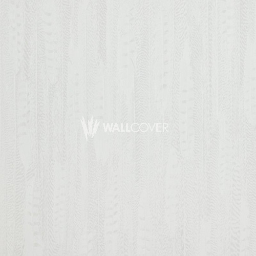 17966 Curious BN Wallcoverings