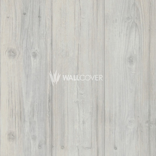 49752 More Than Elements BN Wallcoverings Vliestapete