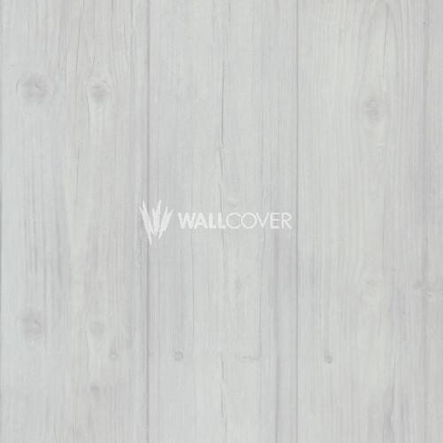 49757 More Than Elements BN Wallcoverings Vliestapete