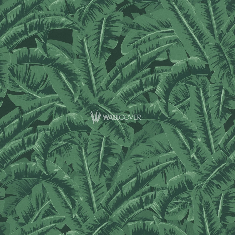 Wallpaper 038985 Jungle Fever Online Shop Wallcovercom