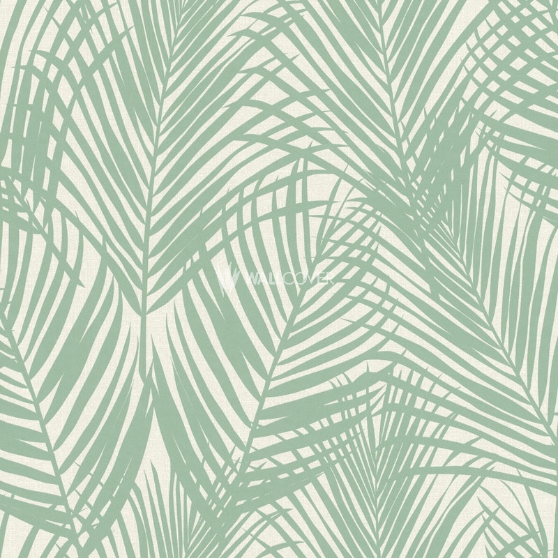 Wallpaper 039005 Jungle Fever Online Shop Wallcovercom