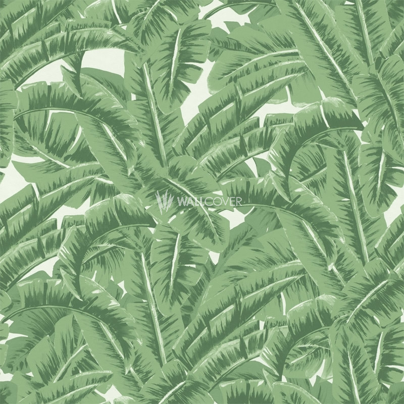 Wallpaper 138984 Jungle Fever Online Shop Wallcovercom