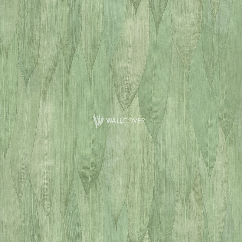 Wallpaper 138986 Jungle Fever Online Shop Wallcovercom