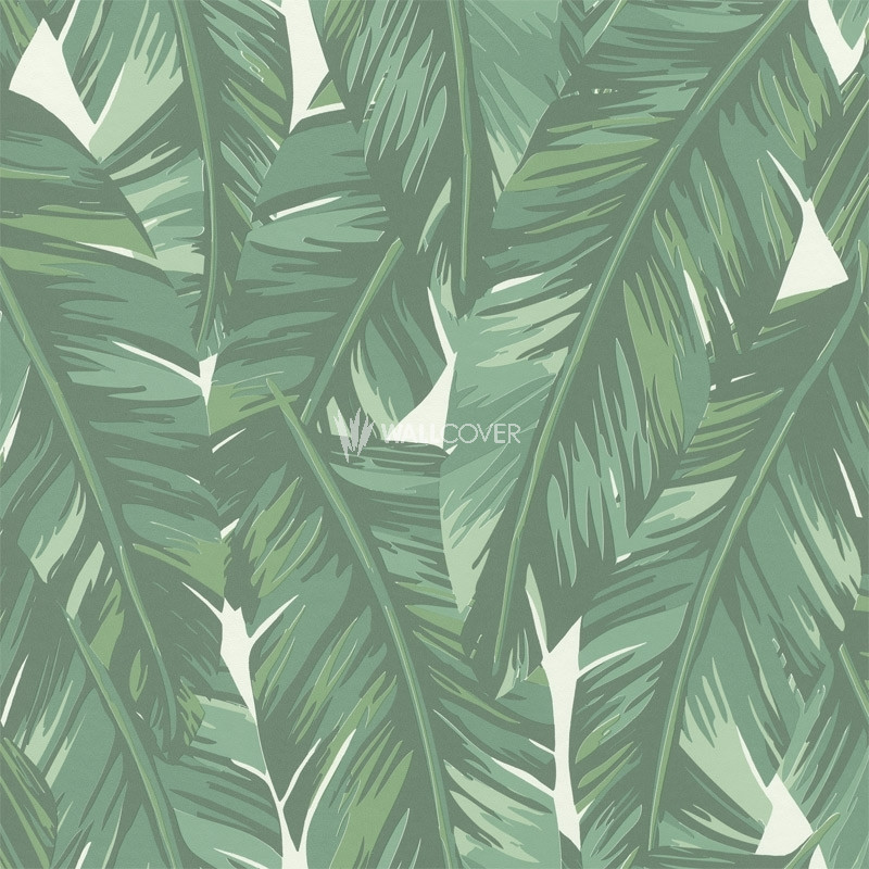 Wallpaper 139014 Jungle Fever Online Shop Wallcovercom