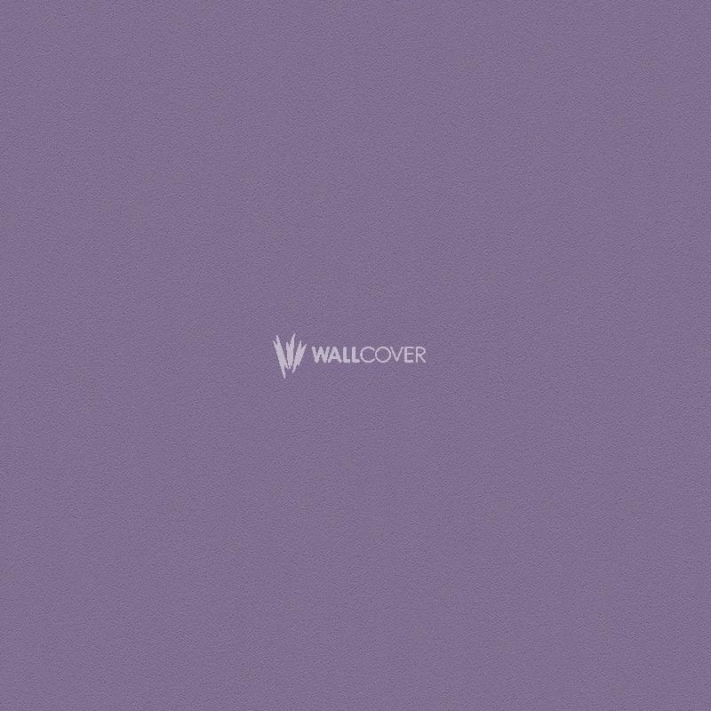 wallpaper 309181 meistervlies die glatte wand online shop. Black Bedroom Furniture Sets. Home Design Ideas