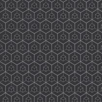 219561 Dimensions by Edward van Vliet