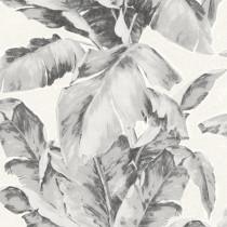 296050 Amiata Rasch-Textil