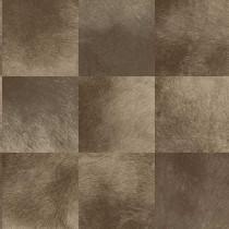 347325 Luxury Skins Origin