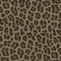 347801 Luxury Skins Origin