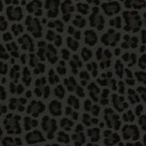 347803 Luxury Skins Origin
