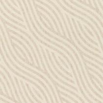 704532 Kalahari Rasch