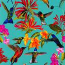 0248210 Hummingbird P+S-International