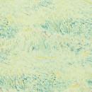 17180 Van Gogh BN Wallcoverings