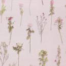 218242 Sweet Dreams BN Wallcoverings