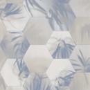 219573 Dimensions by Edward van Vliet