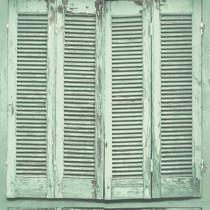 138883 Greenhouse Rasch-Textil Vliestapete