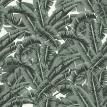 139156 Paradise Rasch-Textil