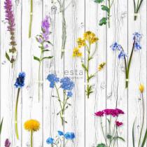158828 Greenhouse Rasch-Textil Vliestapete