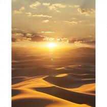 32545 Dune Marburg