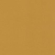 452075 Kalahari Rasch