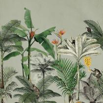 539196 Club Botanique Rasch