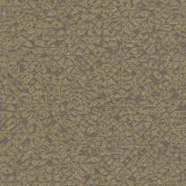 704365 Kalahari Rasch