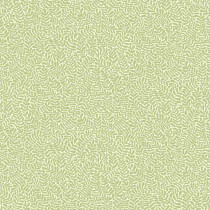 55001 Lina midbec