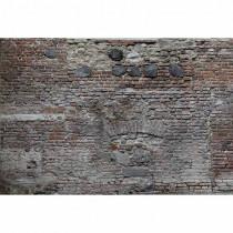 DD115692 XXL Wallpaper 5 livingwalls